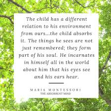 Maria Montessori Quotes Enchanting The Best Montessori Quotes Fred Ted And Company