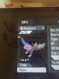 Okay, Shiny Talonflame Pokemon Reborn