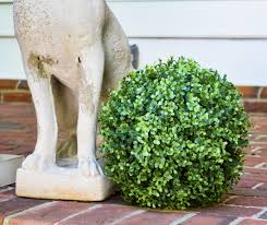 Decorative Boxwood Balls Faux Boxwood Ball 100 UV Stable And Weather Resistant Just Add 25