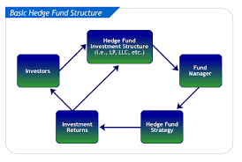 Fund Structure Chart Hedge Fund Formation Rnd Resources Inc