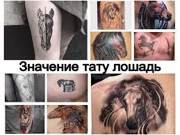 значение тату лошадь информация и фото примеры рисунка татуировки