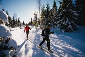 О пользе занятий лыжным спортом Спортивная Территория Каталог  В физическом воспитании лыжный спорт занимает одно из ведущих мест Лыжи доступны для людей самого разного возраста