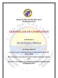 Sample Certificate Of Training Completion Professional Proposal