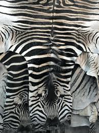 zebra skin rug zebra skin rug stock image image of vertical natural zebra skin rug zebra skin rug