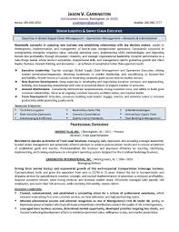 senior technical it manager resume example resume sample for it senior technical it manager resume example resume sample for it manager resume examples 2016 senior audit manager resume examples it project manager