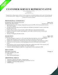 Resume Summary Examples Customer Service Blaisewashere Com