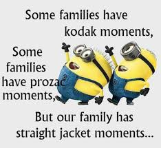 Love My Family Quotes Adorable Lol We Are Nuts But I Love My Family Minion Quotes
