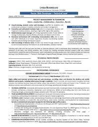 Resume Template Web Free Download Web Designer Resume Template Web
