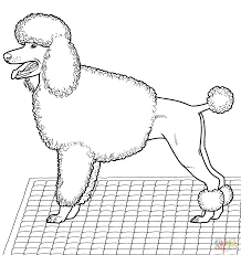 101 Dalmatians Poodle Coloring Pages - Coloring Pages For All Ages ...