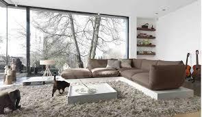 best rugs for living room