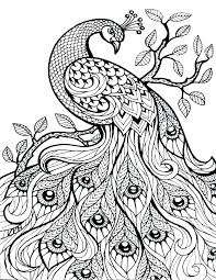 Intricate Coloring Pages Intricate Coloring Pages Animals Free Kids