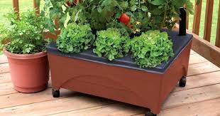 emsco group raised garden bed home depot city pickers raised garden bed only regularly