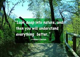 Earth Day Quotes Delectable Earth Day Quotes And Slogans SMS Wishes Quotes