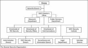 Types Of Organizations Lamasa Jasonkellyphoto Co