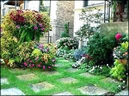 Mini Garden Landscape Design