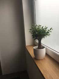 Fensterbank Aus Eiche Brainstorm New House In 2019 Fensterbänke