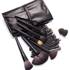 1 hour 24 piece profbrush set w case