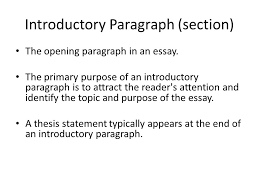 essay writing freshmen fall theme a central unifying or dominant 16 introductory paragraph