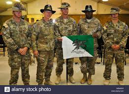 Us Army Cavalry Leaders Of The U S Army 2nd Cavalry Regiment And Leaders
