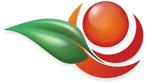 official apple logo png. apple, logo, daun, tanaman, buah official apple logo png