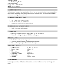 Resume Sample Pdf India Technicalsupportresume Example Collection