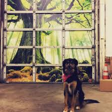 garage door graphics and art