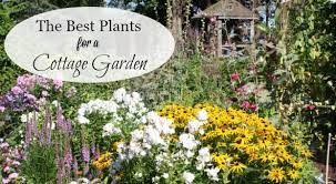 a list of cottage garden plants the