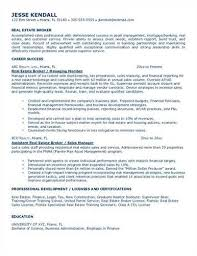 Commercial Real Estate Broker Resume Source