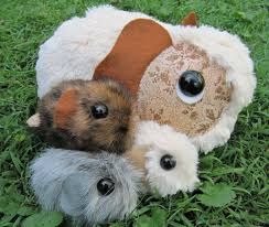 guinea pig toy patterns make your own