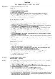 Sample Resume For Project Manager In Manufacturing NPI Project Manager Resume Samples Velvet Jobs 15