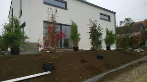 Sichtschutzbepflanzung Moderner Sichtschutz Im Garten Sichtschutzbepflanzung
