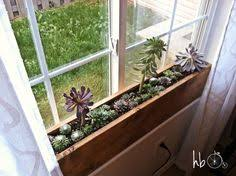Image Sill Planter Diy Idea Make 10 Minute Succulent Windowsill Box Curbly Diy Design Community Pinterest Indoor Window Boxes With Leafy Greens Window Gardens Best