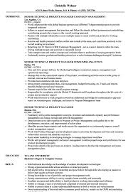 Senior Technical Project Manager Resume Samples 4878600421