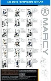 bowflex pr1000 workout chart below is a list of the features blaze home gym it best bowflex pr1000 workout routine