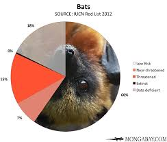 Types Of Bats Chart Endangered Species Tables And Charts