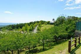 生駒 山麓 公園