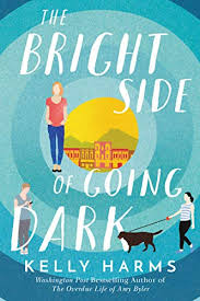 <b>The Bright Side of</b> Going Dark - Kindle edition by Harms, Kelly ...