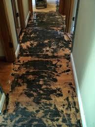 hardwood floor repair water damage photo 4 of 8 can my hardwood floor be repaired hardwood hardwood floor repair water