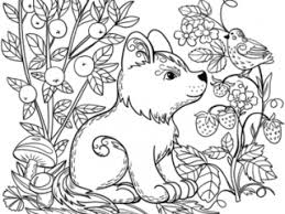 Forest Coloring Pages Puppy Dog In The Forest Coloring Page Free