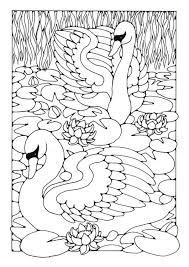 Small Picture 164 best Coloring Pages images on Pinterest Coloring books Free