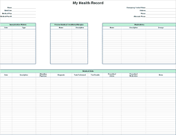 Issue Tracking Template Excel Microsoft Personal Health Record