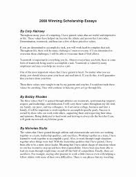 Sample Essay Scholarships Sample Essay For Scholarship Best Of Sample Scholarship