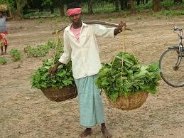 Image result for सरकार ने किसानों को 60 दिन की ग्रेस अवधि देने का निर्णय लिया है जिनका फसल ऋण 1 नवंबर, 2016 और 31 दिसंबर, 2016 के बीच देय है