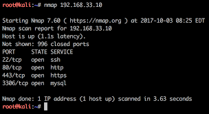 wordpress vulnerability testing with