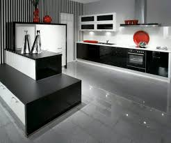 Modern Style Kitchen Cabinets 17 Affordable Modern Kitchen Cabinets Reikiusuiinfo