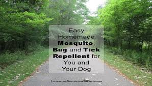 homemade tick and bug repellent