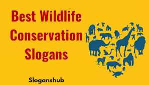 best wildlife conservation slogans sayings