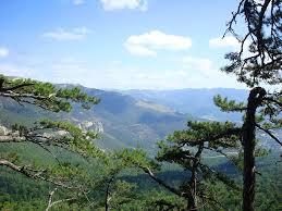 Ялтинский горно лесной природный заповедник Википедия