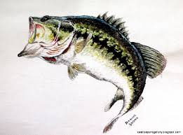 largemouth bass jumping. Interesting Largemouth Largemouth Bass Jumping Drawing  Wallpapers Gallery And