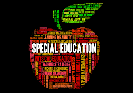Image result for special education pictures